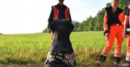 Rettungshundestaffel MKK trainiert für den Ernstfall