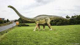 Dinosaurier-Schrecken an der B 27 - Apatosaurus reckt seinen Hals gen Fulda