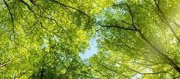 5 Fragen zum Thema Wie bekomme ich frische Luft ins Büro